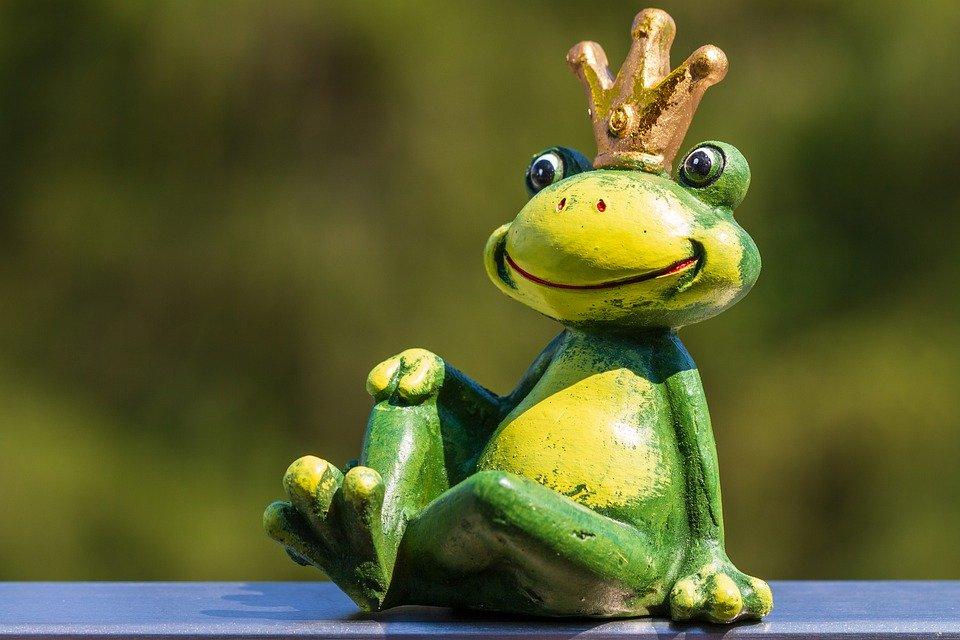 the-frog-becomes-prince