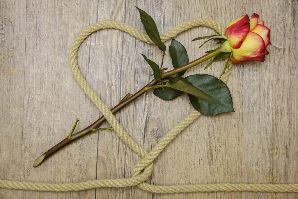 heart from rope and a rose